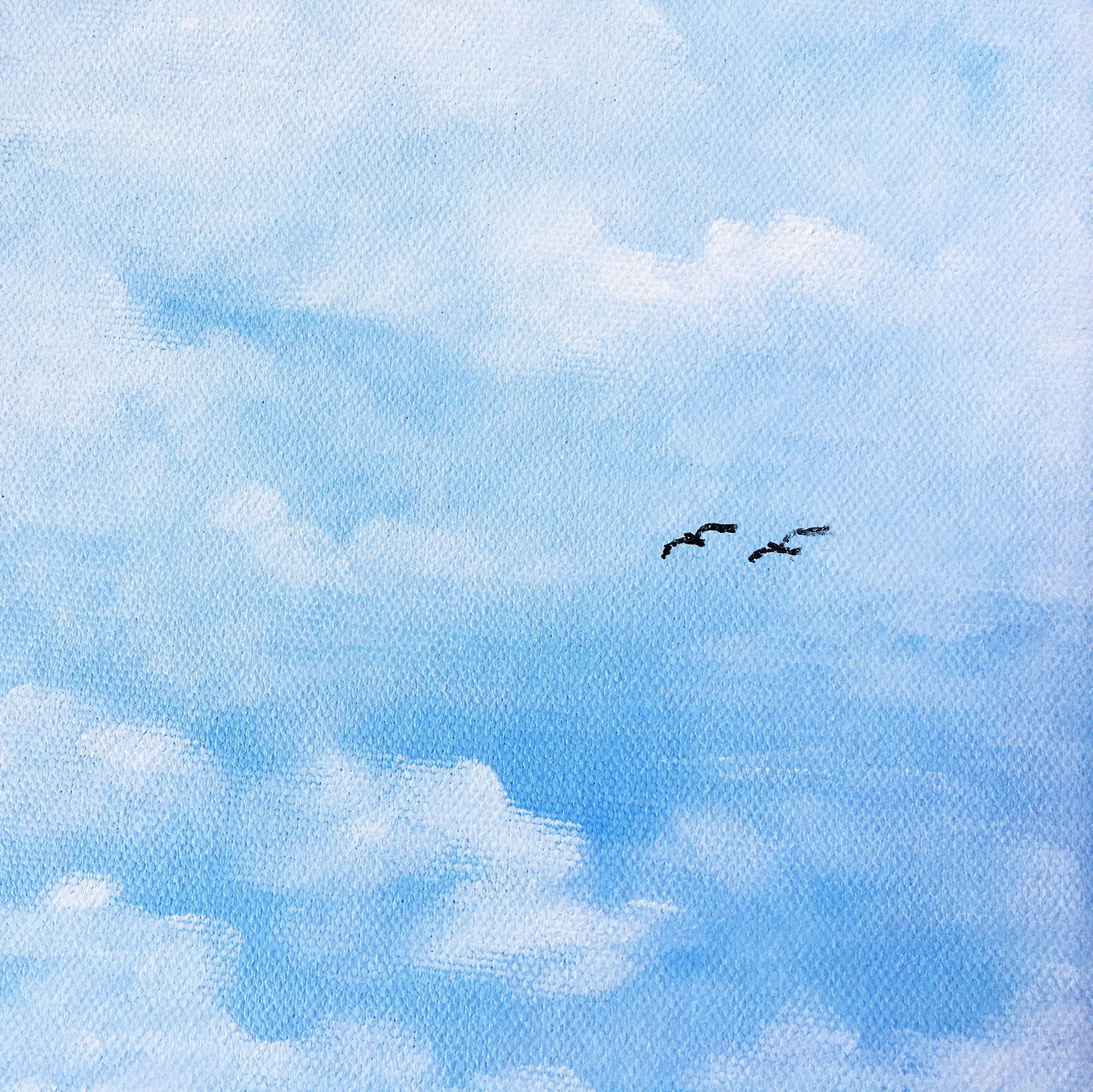 CLOUDS-BIRDS